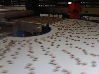 Завиващи ленти за сладкарската промишленост с ъгъл от 45гр. до 180гр. на завоя - материал PU/0.8 - 1.4мм/,цветове : бял,син ,карамел и др. при запитване - Технокон ООД - София